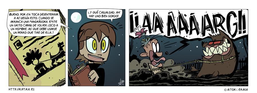 El grito de la mandrágora